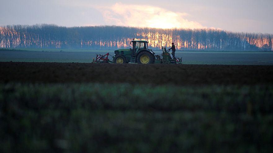 En interdisant les OGM et les pesticides, l'UE cède aux croyances dangereuses | Point de vue