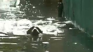Havana hit by severe floods