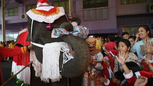 Des pères Noël à dos d'éléphant