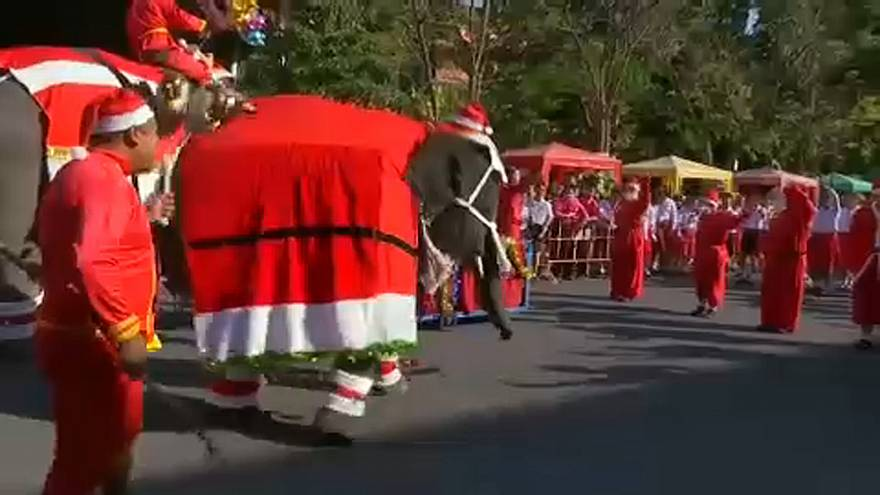 Watch: elephants dressed up as Santa interact with children