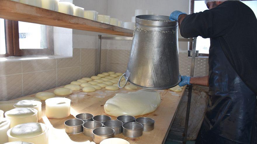 Rus Çarı'nın Türkiye'ye yerleştirdiği Malakanların peyniri yeniden sofralarda