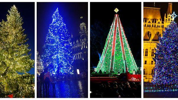 Karácsonyfák a világ minden tájáról