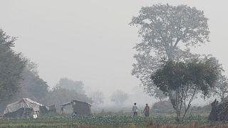 نيودلهي تختنق بأسوأ مستويات التلوث هذا العام
