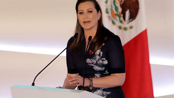 Meksika'da helikopter kazası: Muhalif vali ve senatör eşi öldü