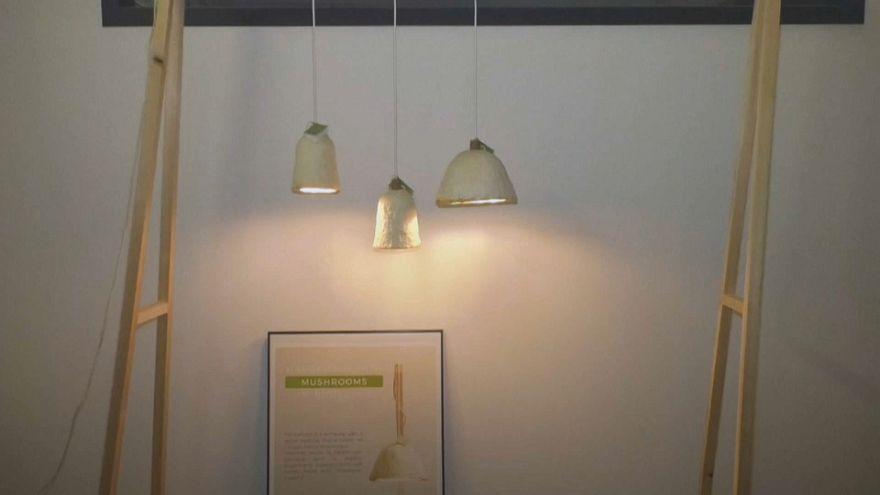 Eco-designer turns mushrooms into lampshades