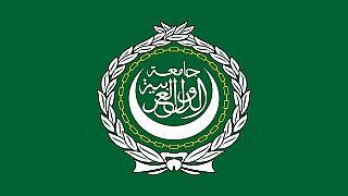 الإمارات :عودة سوريا إلى الجامعة العربية تحتاج توافقا عربيا