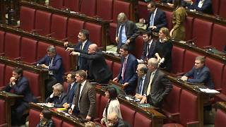 Watch: Budget battle as scuffles erupt in Italian parliament
