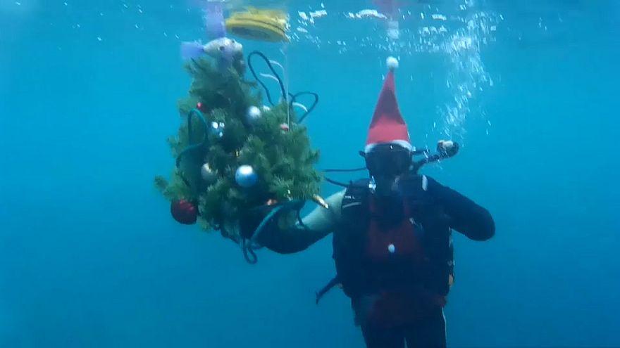 Karácsonyfa és pezsgős koccintás a jeges vízben