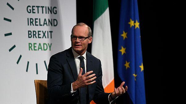 وزير الخارجية الإيرلندي سايمون كوفيني