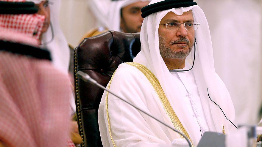 وزير الدولة للشؤون الخارجية الإماراتي، أنور قرقاش