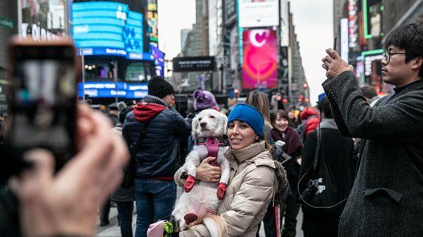شاهد: نيويورك تستعد لإنزال الكرة الكريستالية ترحيباً بـ2019