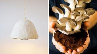 Watch: Mushroom lampshades grown from discarded coffee grounds? It's eco-minded design.