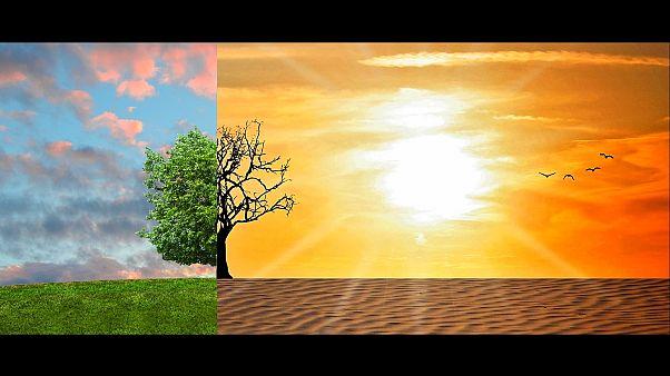 Глобальное потепление: печальные итоги 2018 года
