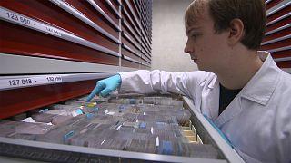 Darmkrebs - Biobanken helfen bei der Früherkennung