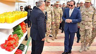 Mısır hükümetinden 'Sisi - İsrail işbirliğine' sansür çabası