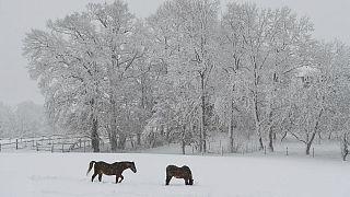 زمستان در قاره سبز؛ از خلق مناظر زیبا تا اختلال در زندگی