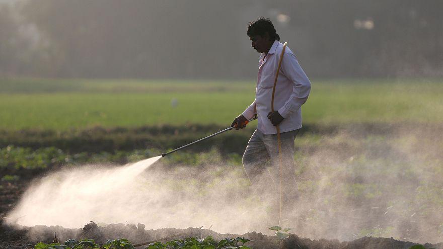استفاده از آفتکش جلوی صادرات محصولات کشاورزی خاورمیانه به اروپا را میگیرد