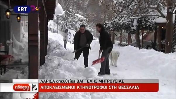 Grecia sigue bajo un manto blanco y se espera más nieve