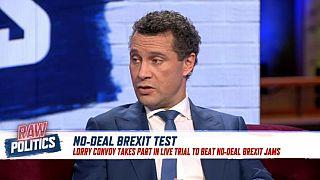 Romania EU Presidency, Yellow Vests, Brexit | Raw Politics