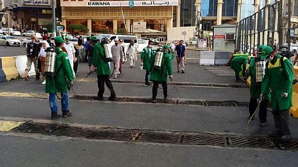 """شاهد: صراصير """"تغزو"""" مكة .... والسلطات الرسمية تستنفر"""