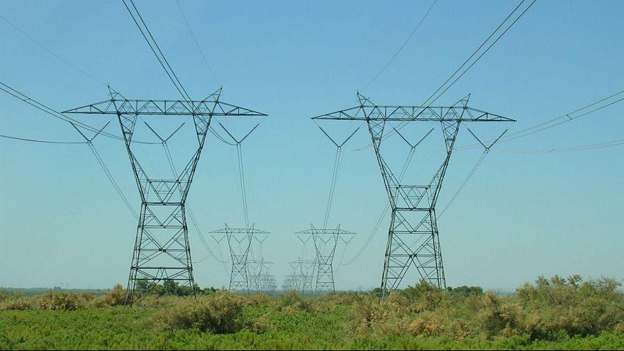 یک سمور برق ۱۷ هزار خانه در گرونوبل فرانسه را قطع کرد