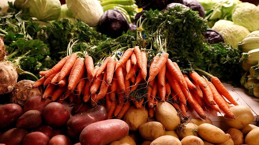 Három mázsa zöldséget szüreteltek az Antarktiszon