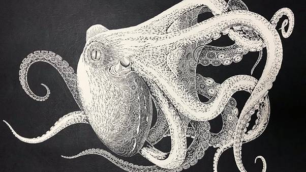 Watch: This beautiful octopus was cut out of a single piece of paper