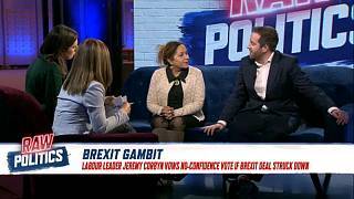 Labour is pro-EU and wants to stay aligned with Brussels, MEP tells Euronews   Raw Politics