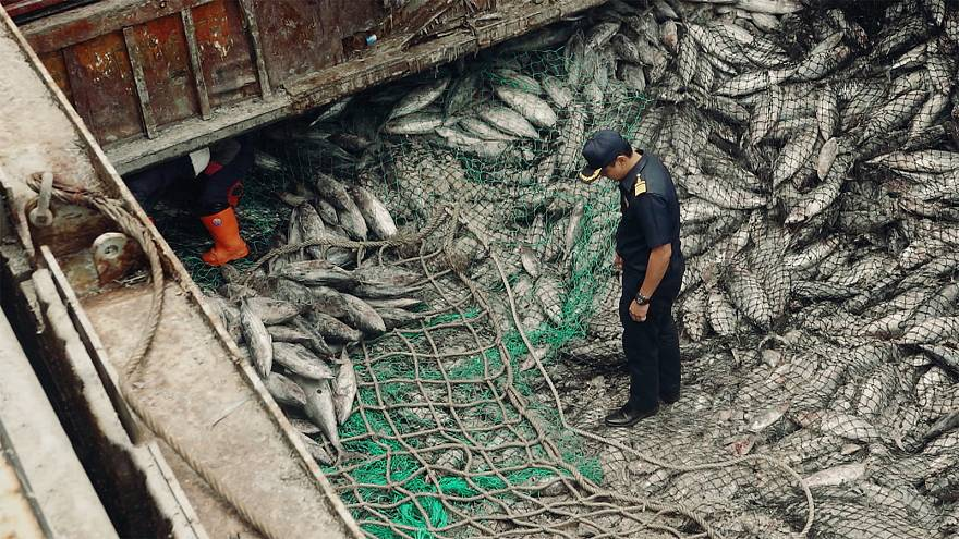 How the EU stamped down on decades of illegal fishing in Thailand