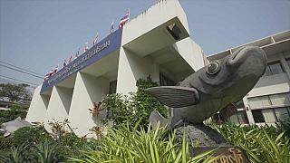 Πώς κατάφερε η Ταϊλάνδη να πολεμήσει την παράνομη αλιεία