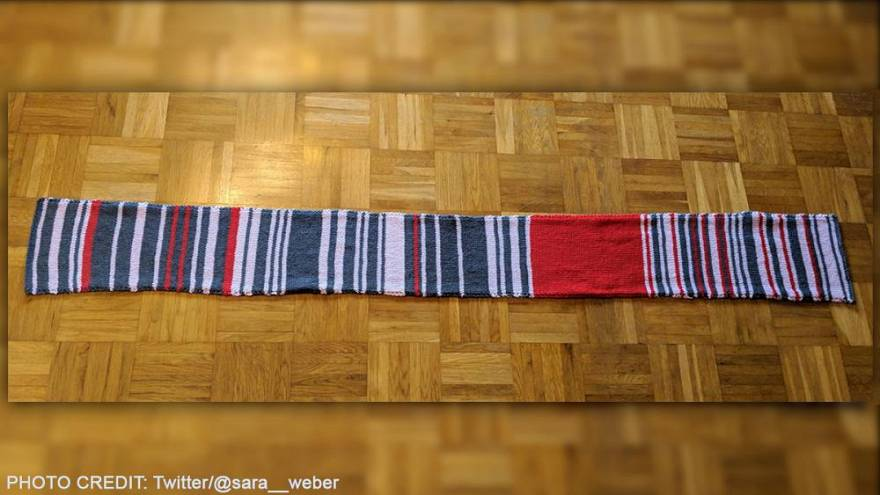 Train operator buys 'rail delay scarf' by frustrated German commuter for €7,500