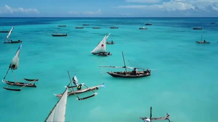 Kraken Cup: nel blu, dipinto di blu di Zanzibar
