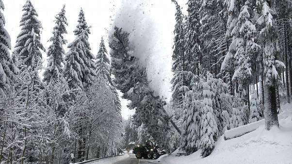 Severe snowfall brings parts of Europe to a grinding halt
