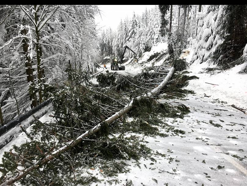 Three German skiers dead in Austrian avalanche