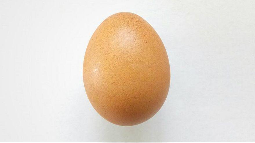 تخم مرغ اینستاگرامی با ۳۴ میلیون لایک رکورد شکست