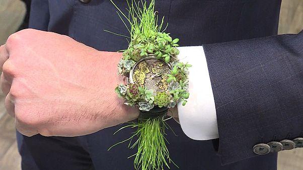 Der Mann von Welt trägt Grün