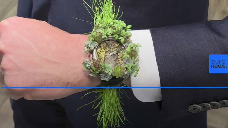 The watch made of plants