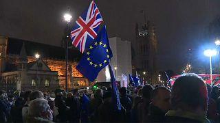 Brexit: Forderung nach Referendum