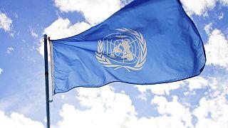 Her üç Birleşmiş Milletler çalışanından biri cinsel tacize maruz kalıyor