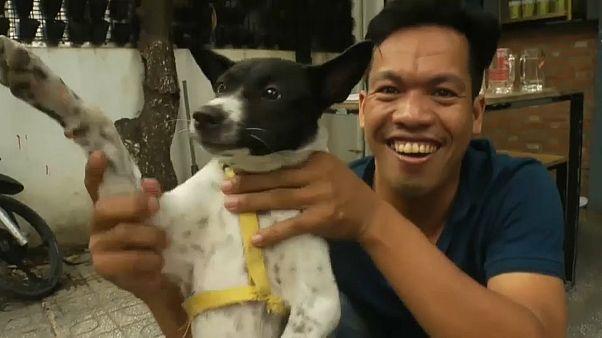 وللناس فيما يعشقون.. شاهد كيف تُسلق الكلاب وتشوى ثم تقدم على الموائد في كمبوديا ؟