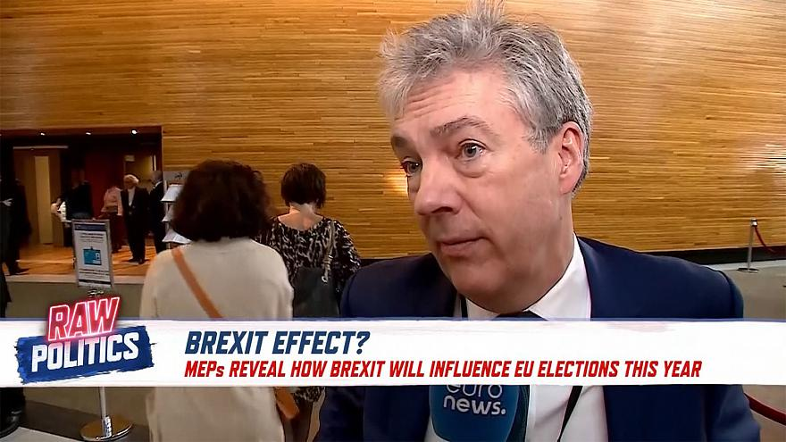 Paul Brennan, British MEP on Brexit's influence on EU elections.
