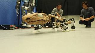 Forscher bauen Roboter eines Ursauriers: Sein Gang soll zeigen, wie er lebte