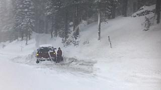 Hóvihar Kaliforniában