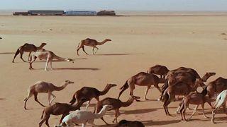 The desert train of Mauritania