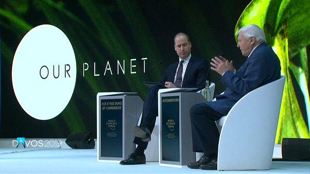 """Davos: """"Se puede hacer mucho dinero y proteger el medio ambiente"""""""