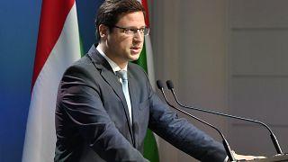 Gulyás: Birnbaummal sem a kormány, sem a Fidesz nem állt semmilyen szerződéses jogviszonyban