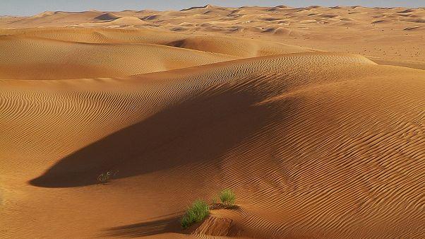 خليجيون في موكب صيد في صحراء تونس يواجهون اعتراضا من الأهالي