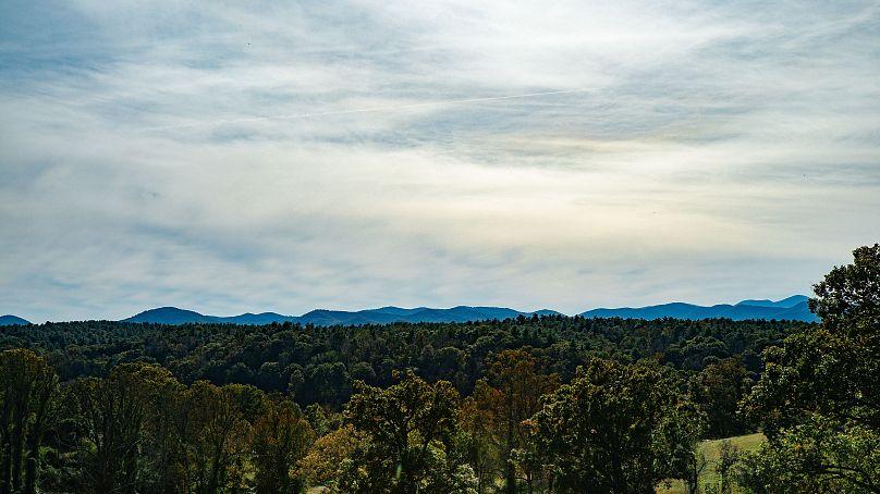 Arte, cultura e panorami mozzafiato: Asheville è il paradiso creativo del North Carolina