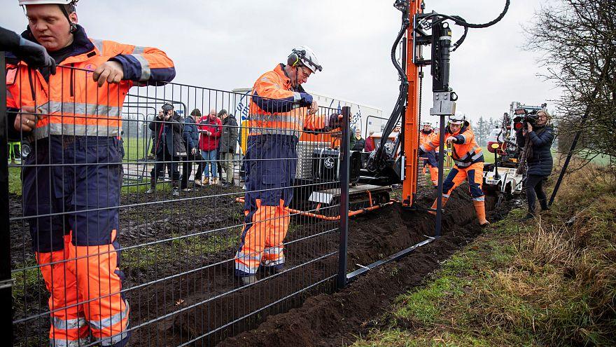 شاهد: الدنمارك تبني حاجزاً على حدودها مع ألمانيا لمنع تسلل الخنازير