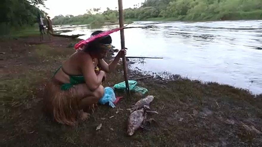La tribu des Pataxos affectée par la catastrophe minière au Brésil